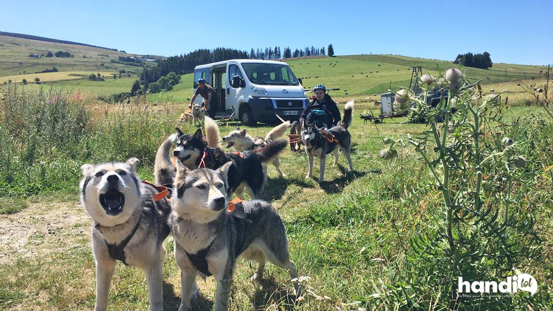 Cani rando accessible PMR en Haute-Loire avec Marzoé Nature